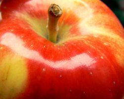 Fogyókúrás édesség almából